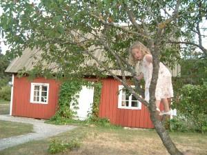 Gotland, 2006